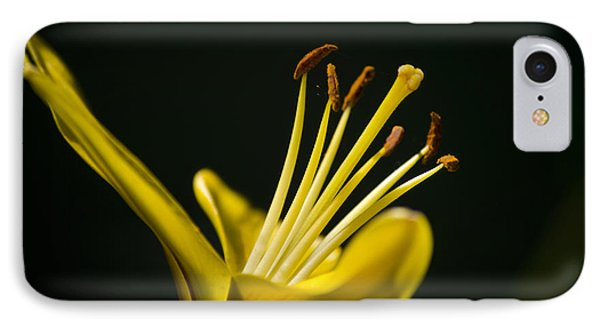 Yellow Lily Phone Case by Christina Rollo