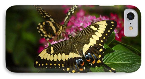 Yellow Swallowtail Butterflies  Phone Case by Saija  Lehtonen