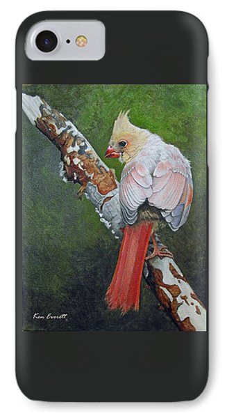 Young Cardinal  IPhone Case by Ken Everett