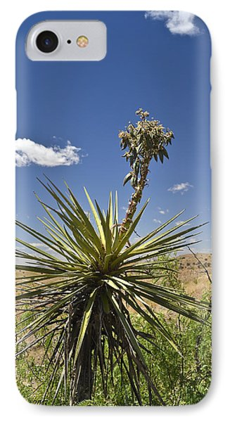 Yucca Fights Back IPhone Case by Allen Sheffield