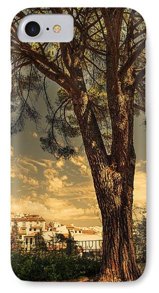 Pine Tree In The Secret Garden Phone Case by Jenny Rainbow