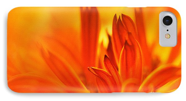 Fire Storm  Phone Case by Elaine Manley