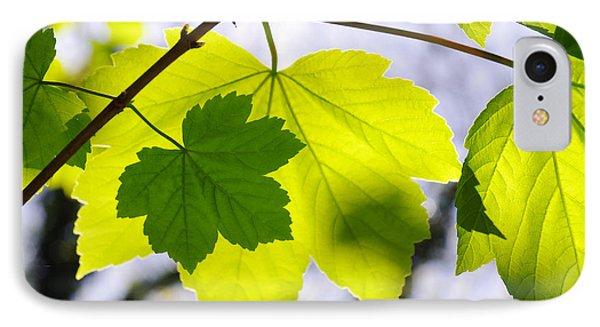 Green Leaves Phone Case by Carlos Caetano