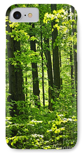 Green Spring Forest Phone Case by Elena Elisseeva