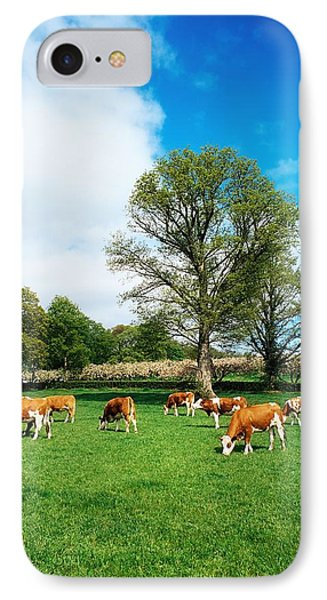 Hereford Bullocks Phone Case by The Irish Image Collection