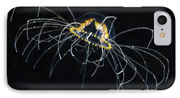 Hydrozoan Medusa Phone Case by Alexander Semenov