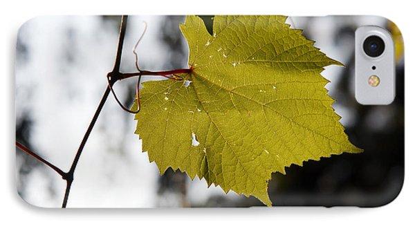 Leaves Of Wine Grape Phone Case by Michal Boubin
