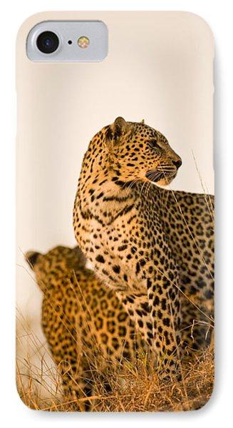 Leopard Panthera Pardus, Arathusa Phone Case by Stuart Westmorland