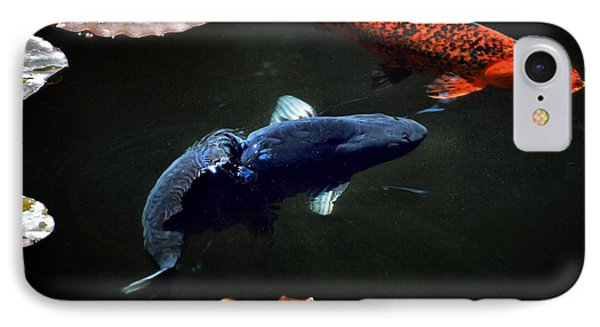 Playing Koi IPhone Case by Don Mann