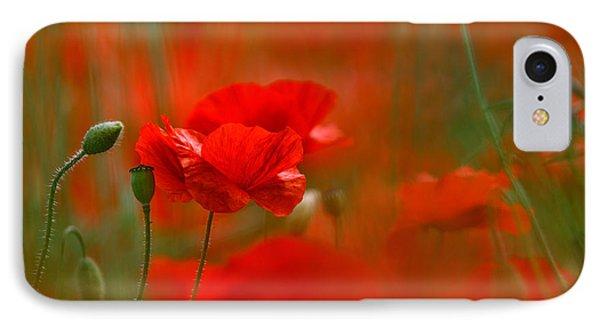 Poppy Flowers 02 IPhone Case by Nailia Schwarz