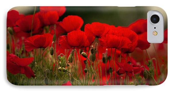 Poppy Flowers 05 IPhone Case by Nailia Schwarz