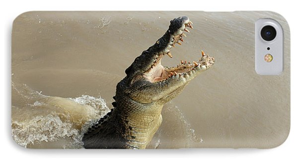 Salt Water Crocodile 2 IPhone Case by Bob Christopher