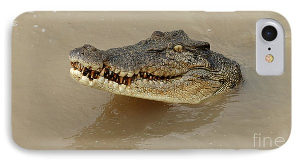 Salt Water Crocodile 3 IPhone Case by Bob Christopher