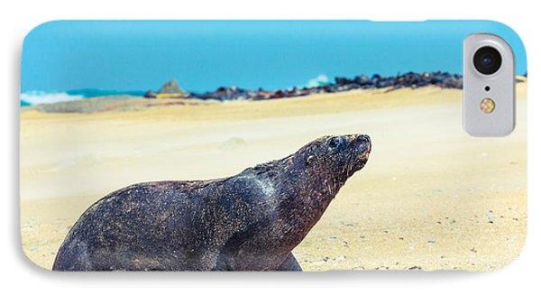 Sea Lion Phone Case by MotHaiBaPhoto Prints