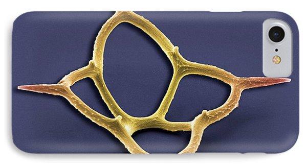 Silicoflagellate, Sem Phone Case by Steve Gschmeissner