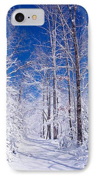Snowy Path Phone Case by Rob Travis