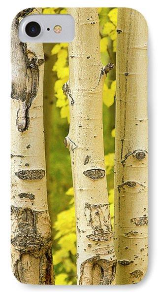 Three Autumn Aspens Phone Case by James BO  Insogna
