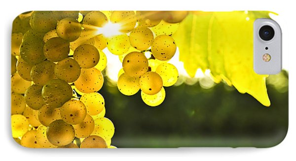Yellow Grapes Phone Case by Elena Elisseeva