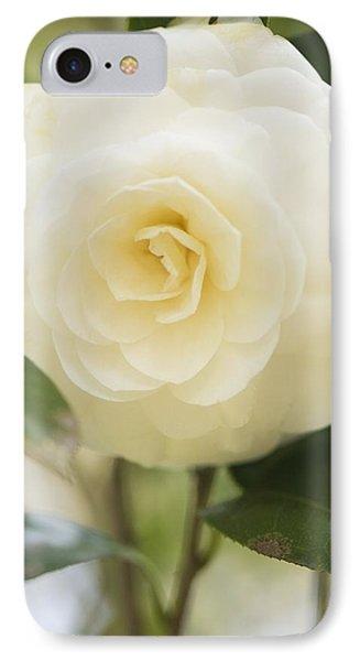 Camellia Japonica Phone Case by Maria Mosolova
