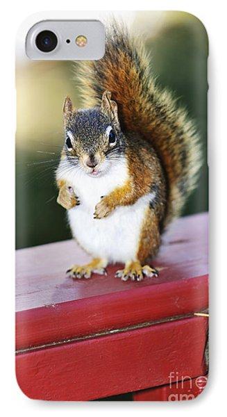 Red Squirrel On Railing Phone Case by Elena Elisseeva