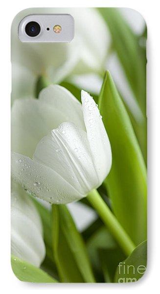 White Tulips Photograph By Nailia Schwarz