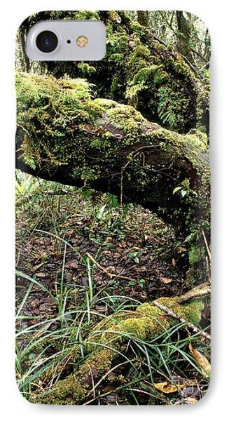 El Yunque National Forest Phone Case by Thomas R Fletcher