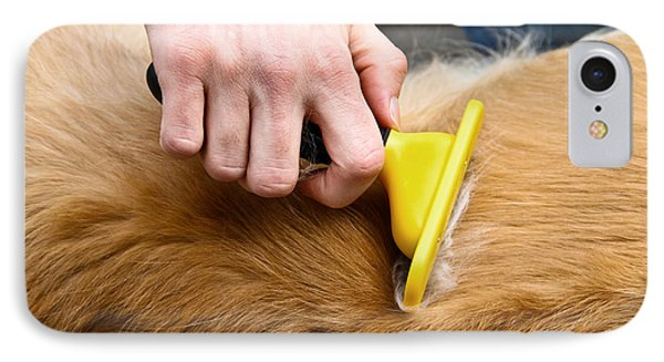 Dog Grooming IPhone Case by Photo Researchers, Inc.