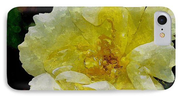 A Rose Is A Rose Rrwc IPhone Case by Jim Brage