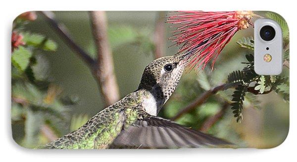 A Taste For Nectar  Phone Case by Saija  Lehtonen