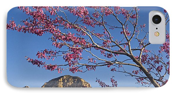 A Tree With Pink Blossoms In Red Rock IPhone Case by Axiom Photographic