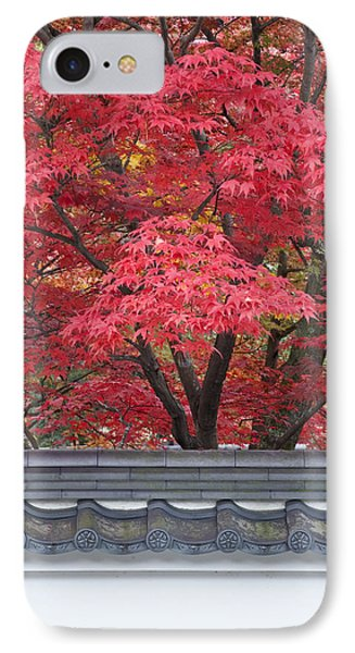 Acer Trees Acer Palmatum. Autumn Color IPhone Case by Rob Tilley