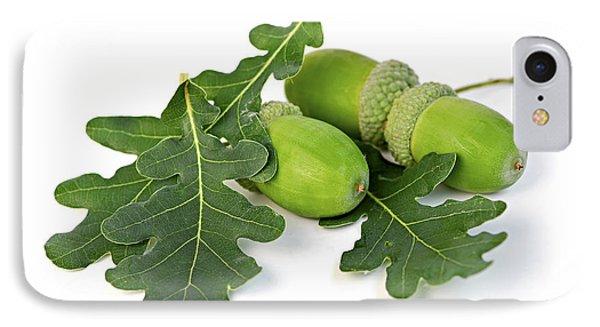 Acorns With Oak Leaves IPhone Case by Elena Elisseeva
