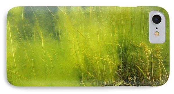 Algae Phone Case by Alexis Rosenfeld