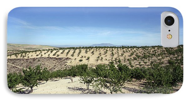 Almond Plantation IPhone Case by Carlos Dominguez