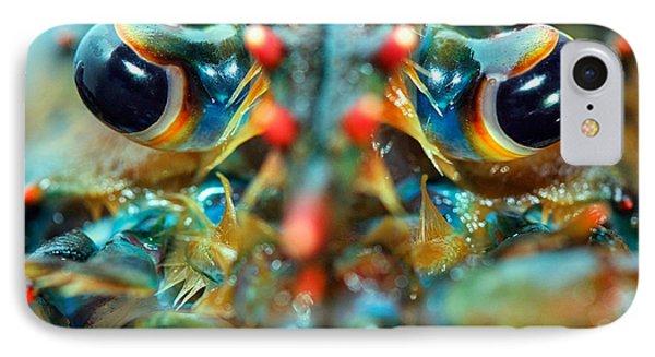American Lobsters IPhone Case by Matt Suess