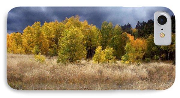Autumn Meadow Phone Case by Carol Cavalaris