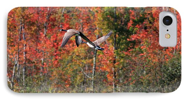Autumn Vermont Geese And Color Phone Case by Deborah Benoit