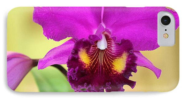 Beautiful Hot Pink Orchid Phone Case by Sabrina L Ryan