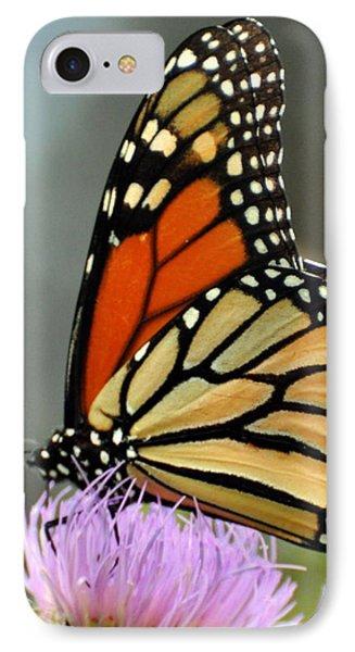 Beautiful Monarch Phone Case by Marty Koch