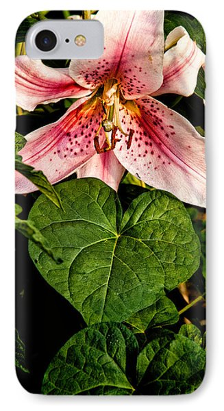 Beauty Phone Case by Christopher Holmes