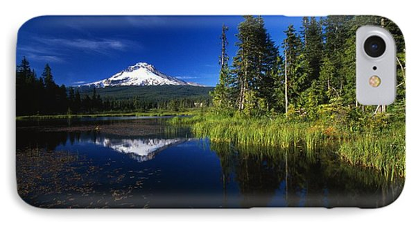 Beaver Dam In Pond, Reflection Of Mount Phone Case by Natural Selection Craig Tuttle