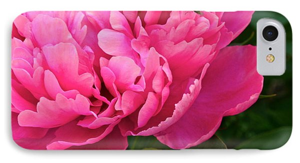 Behold The Beauty Phone Case by Frozen in Time Fine Art Photography