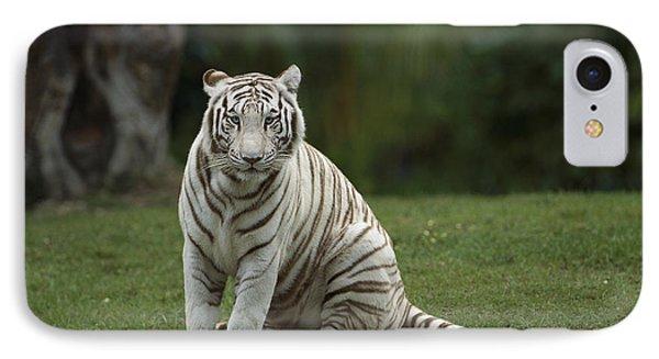 Bengal Tiger Panthera Tigris Tigris Phone Case by Konrad Wothe