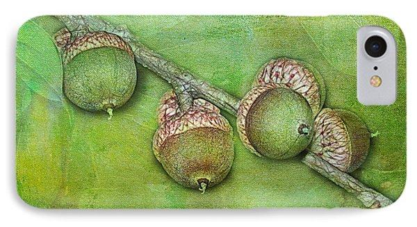 Big Oaks From Little Acorns Grow Phone Case by Judi Bagwell