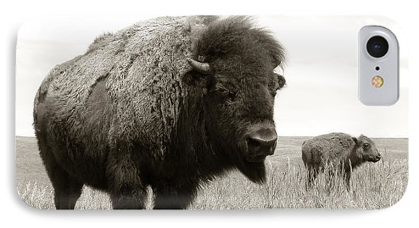 Bison And Calf IPhone Case by Olivier Le Queinec