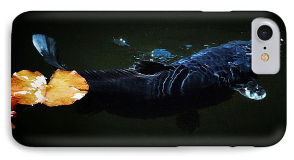 Black Koi By The Lillies IPhone Case by Don Mann