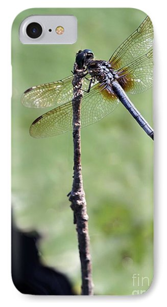 Blue Dasher Dragonfly Dancer Phone Case by Sabrina L Ryan