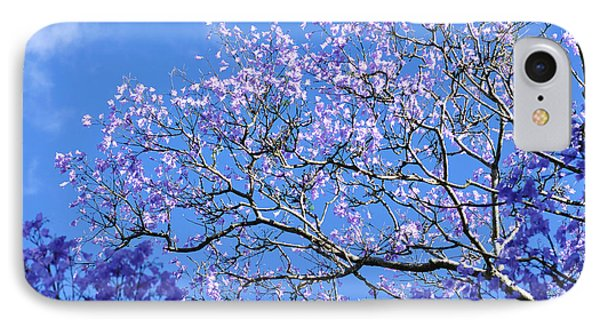 Blue Sky And Jacaranda Blossoms IPhone Case by Kaye Menner