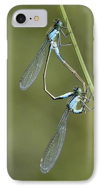 Blue-tailed Damselfly Phone Case by Adrian Bicker