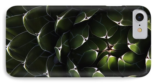 Bolivian Plant In Late Afternoon Light Phone Case by Robert Postma